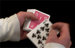 All The Cards - a video shot and edited by Graham Collins for the BC Civil Liberties Association